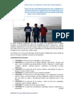 Impacto Ambienal en Proyectos de Ingenieria Civil