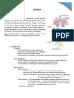 Resumo - Histologia Respiratório
