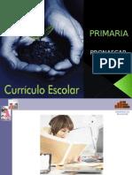Diversificacion curricular.ppt