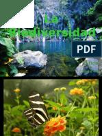 Copia de Bio Divers Id Ad Presentacion 2