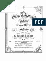 Allegro All Spagnuola-G. Briccialdi