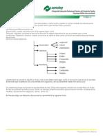 estructurasecuencial-091221231701-phpapp01