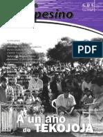 INFORMATIVO CAMPESINO - 213 - JUNIO 2006 - CDE - PORTALGUARANI