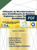 Utilização de microbiorreatores para estabilização de resíduos orgânicos e técnica de bioabilitação