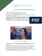 Dalí. Sugestiones Poeticas y Posibilidades Plásticas