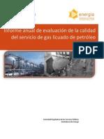Informe Calidad Glp Anual 2014 Final