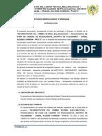 Hidrologia y drenaje.pdf