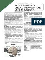Psicologia y Filosofia 02 PROCESOS PSIQUICOS Y FIL. HELINISTICO ROMANA.doc