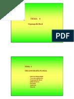 Tema 04 Organograf_a Floral Alumnos