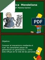 GeneticaMendeliana.ppt