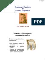 Anatomía y Fisiología delSistema Esquelético