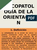 4. Psicopatología de La Orientación