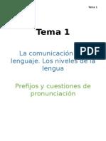 Plantilla Lengua