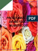 Programación de Metodos Numericos