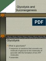 Glycolysis Gluconeogenesis