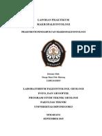 LAPORAN MAKROPALEONTOLOGI.docx