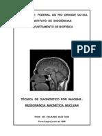 IRMN_manuscrito
