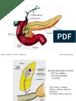Digestório III