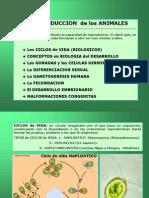 02._ReprSexAnimal(2).pdf