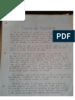Sintesis Educacion Prohibida