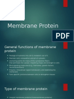 Membrane Protein AAD.pptx