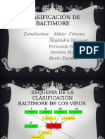 Diapositivas Baltimore