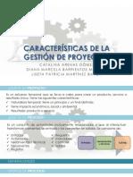 Características de La Gestión de Proyectos