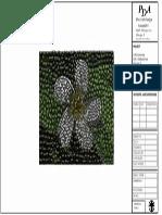 Mosaic TitleBlock Puccetti PDF