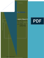 212785990 Informe de Prueba de Infiltracion Irregacion PDF