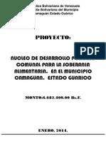 Proyecto Nucleo Porcino
