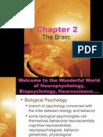 chap2 day1 neuron rv neurons