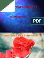 Rosas Con Nombres