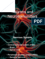 Lecture 7 Neurons