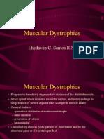 22213745 Muscular Dystrophy