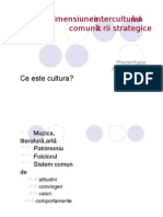 2 Dimensiunea Interculturala A