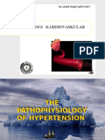 Hypertension CVS K43
