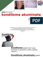 Adi Presentasi Kondiloma