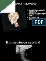 05-06. Biomecanica Cervical 08