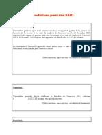 Exemple de Résolutions Pour Une SARL