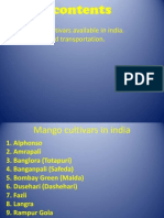 mango cultivars in india transportation and shipping