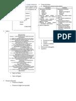 Rgr.ceteM.tesis.estructura.2015my