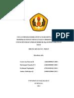 Unpad Pkmp 2013 Cocok Ana Maryani b Modifikasi Zeolit Menggunakan