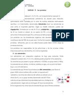 Apuntes de Proteinas pdf