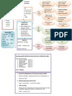 Concept Map BPH.doc