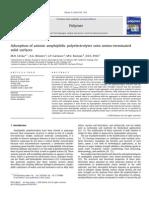 Adsorption of Anionic Amphiphilic Polyelectrolytes Onto Amino-terminated