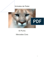 Puma Yunta