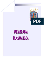8)MEMBRANA [Sólo Lectura]
