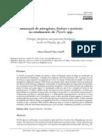 academica-3708
