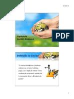 Ingeniería Ambiental Capítulo IV Gestión Ambiental MVPS