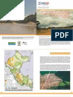 ANÁLISIS DE LA DEFORESTACIÓN EN TIEMPO CASI REAL || Policy Brief N° 4